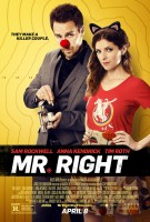 Mr. Right (2016) Action / Comedy / Romance